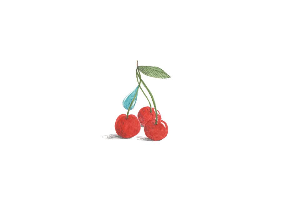 PORTADELLA-CIRERES-RGB_905.jpg
