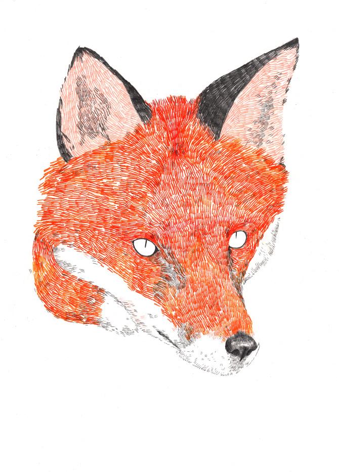FOX retocat2.jpg