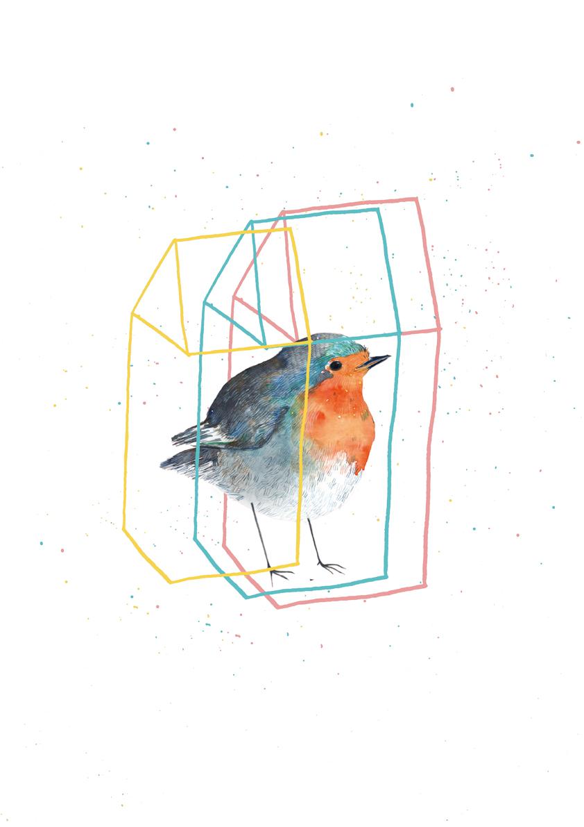 pit-roig tricolorweb.jpg