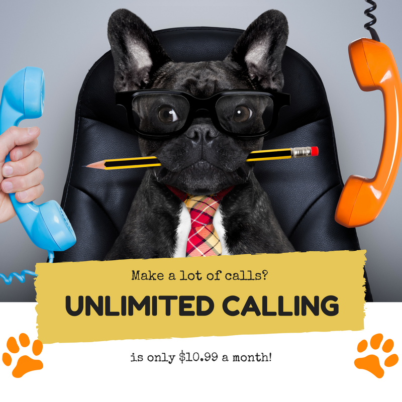 Unlimited Calling.png