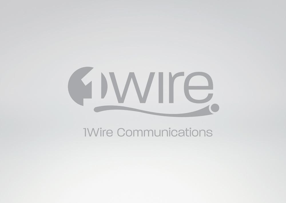 1-Wire copy.jpg