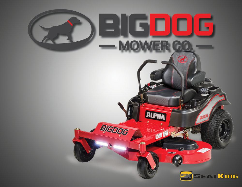 Big Dog_Alpha.jpg