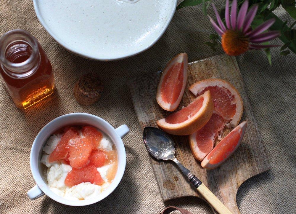 Panacotta with Grapefruit and Honey