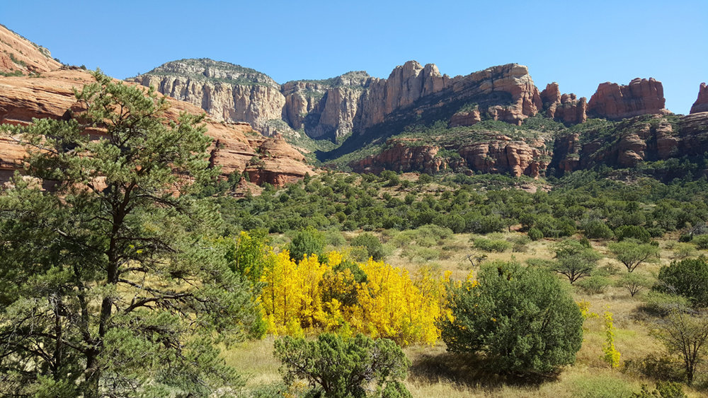 Palatki7_Sedona_Red_Rocks_fall_colors.jpg