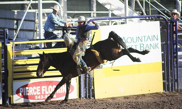 Montana State Fair Rodeo