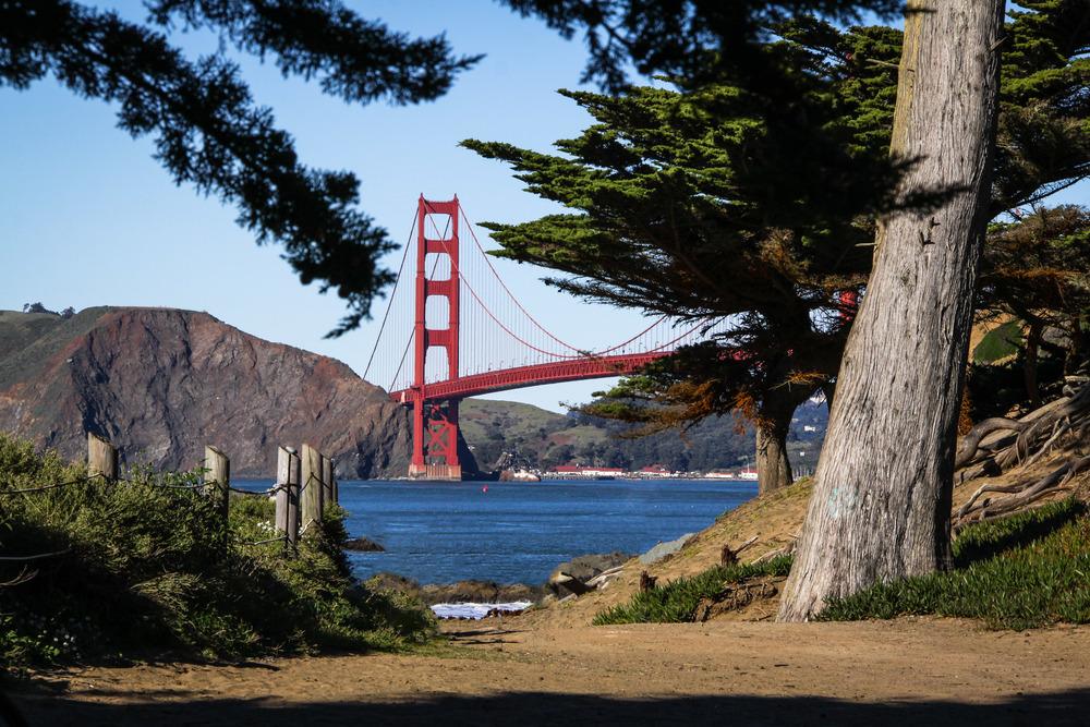 San_Francisco_Weston_Table.jpeg