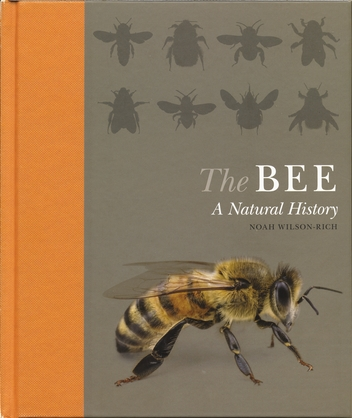 The Bee A Natural History