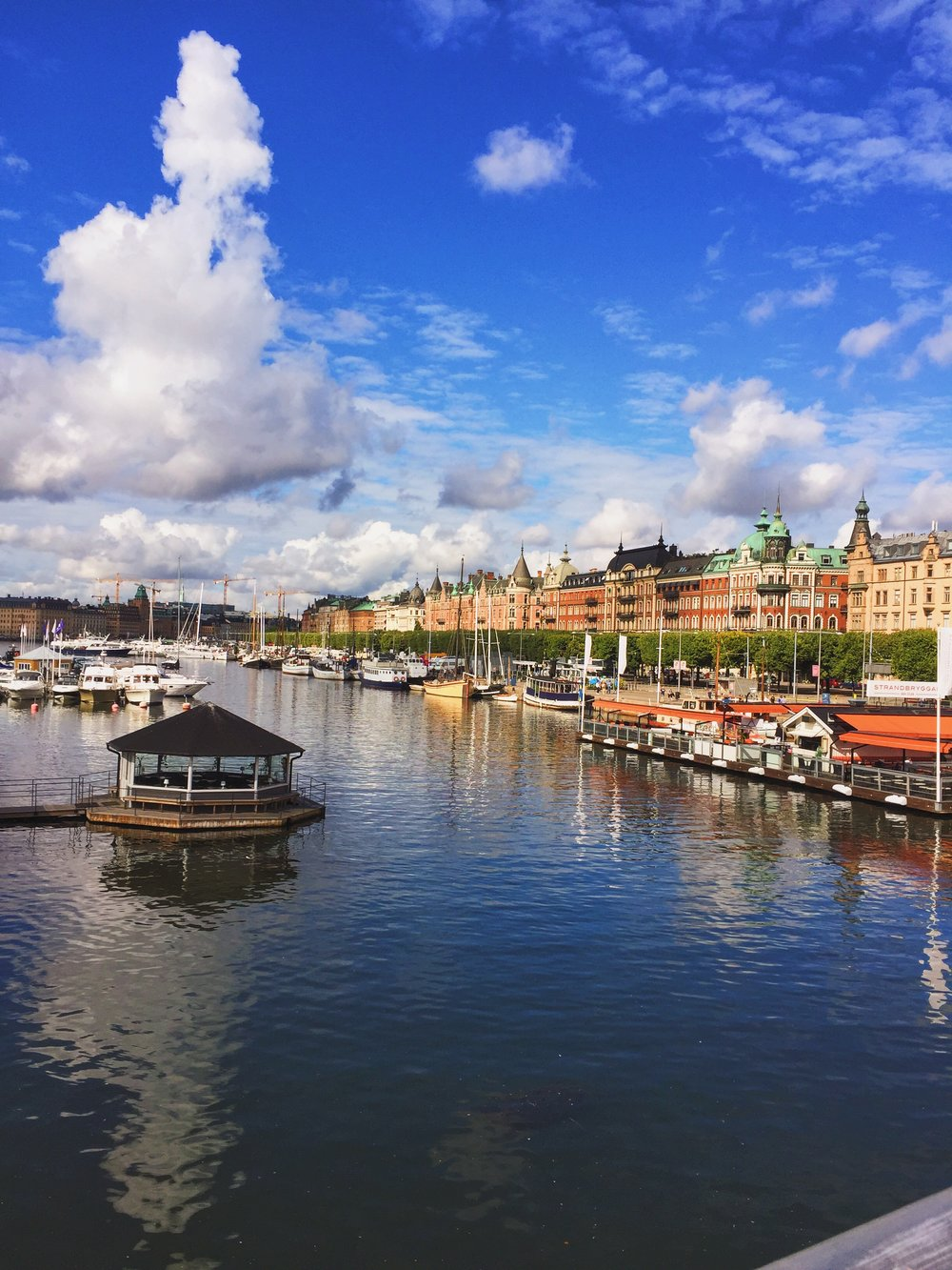 Walking Tour of Stockholm Private guide Anna Maria