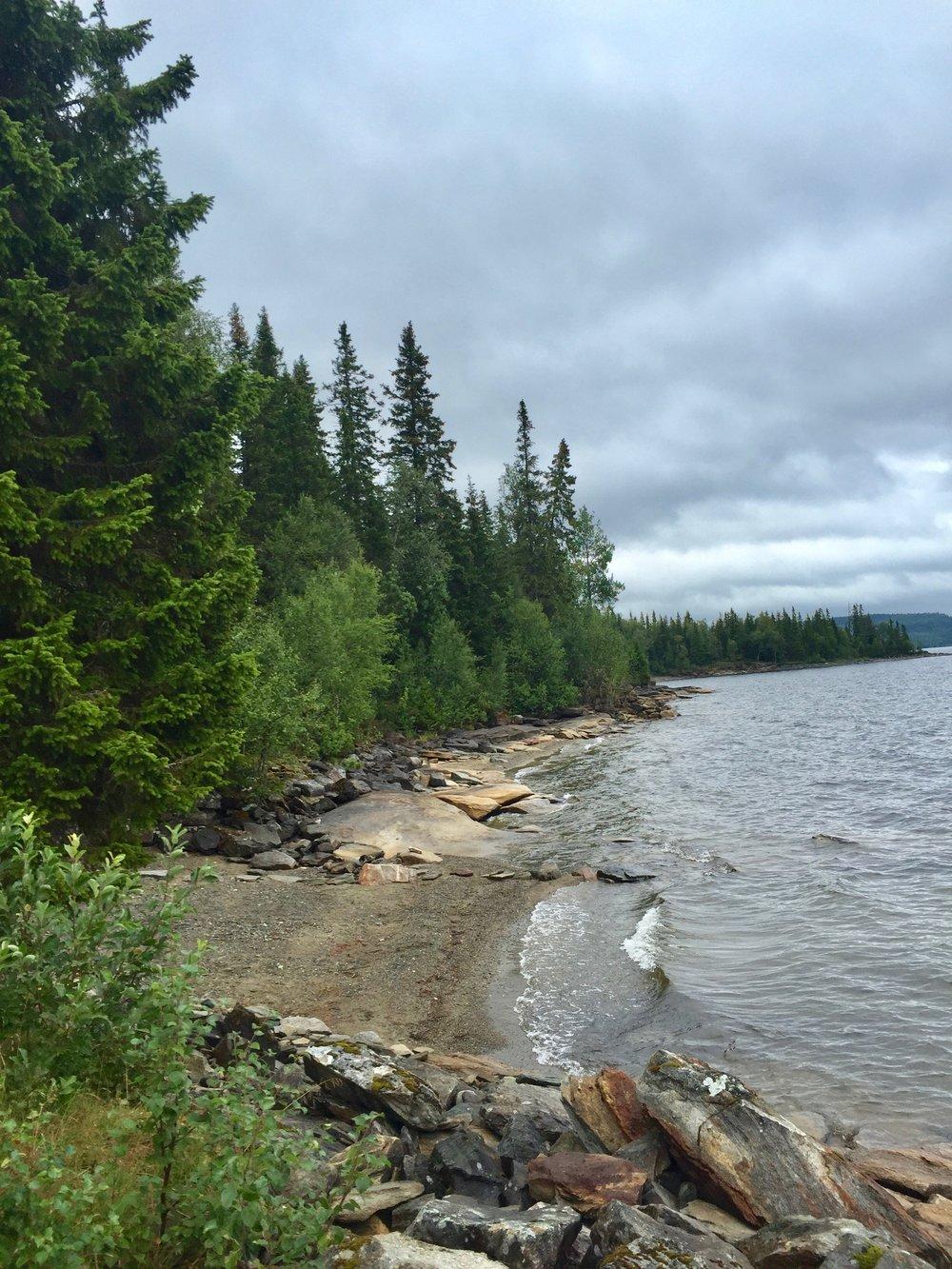 Faviken Property Summer 2016