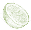 Citrus_icon_placeholder.png