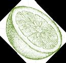 Citrus_icon_placeholder.png