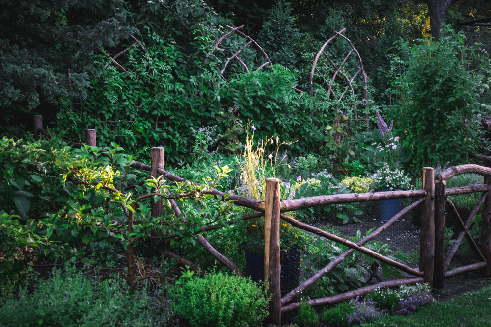 THE KITCHEN GARDEN  - America finds itself at a crossroads with food. Healthy, fresh fruit and vegetables are down right expensive. Large food companies entice consumers with fancy packages filled with GMO's, preservatives, additives, and chemicals known to cause bodily harm with the trade off that they cost far less than naturally grown, sun kissed fruit and vegetables. As a food nation we have veered off course. Eating seasonally and sustainably seem like catchy liberal phrases rather than common sense. So many Americans find themselves choosing between a $1 hamburger and a $1 tomato. Seems like a ridiculous choice, but for many it is the reality. Getting back to basics, and eating what the season can deliver is as simple as filling a container with soil, dropping in some seeds, watering regularly and delighting in watching nature's gifts grow. Limited urban space? No problem. New potatoes grow in a recycling bin, tomatoes in a stock pot, and lettuces on the window sill.For those with a bit more area to grow food, think about growing a kitchen garden. From the 16th century courts of English kings, to the modern French countryside farmers, a kitchen garden has provided a miniature growing plot designed to provide all-season access to herbs, vegetables, and fruit for hundreds of years. Creative souls add a bit of ornament: aesthetically pleasing shrubs, perennial flowers and annuals for brilliant pops of color. The kitchen garden is first utilitarian and second, but for many just as important, a joyful place to watch the earth do what it does best--provide nourishment for the body and soul.