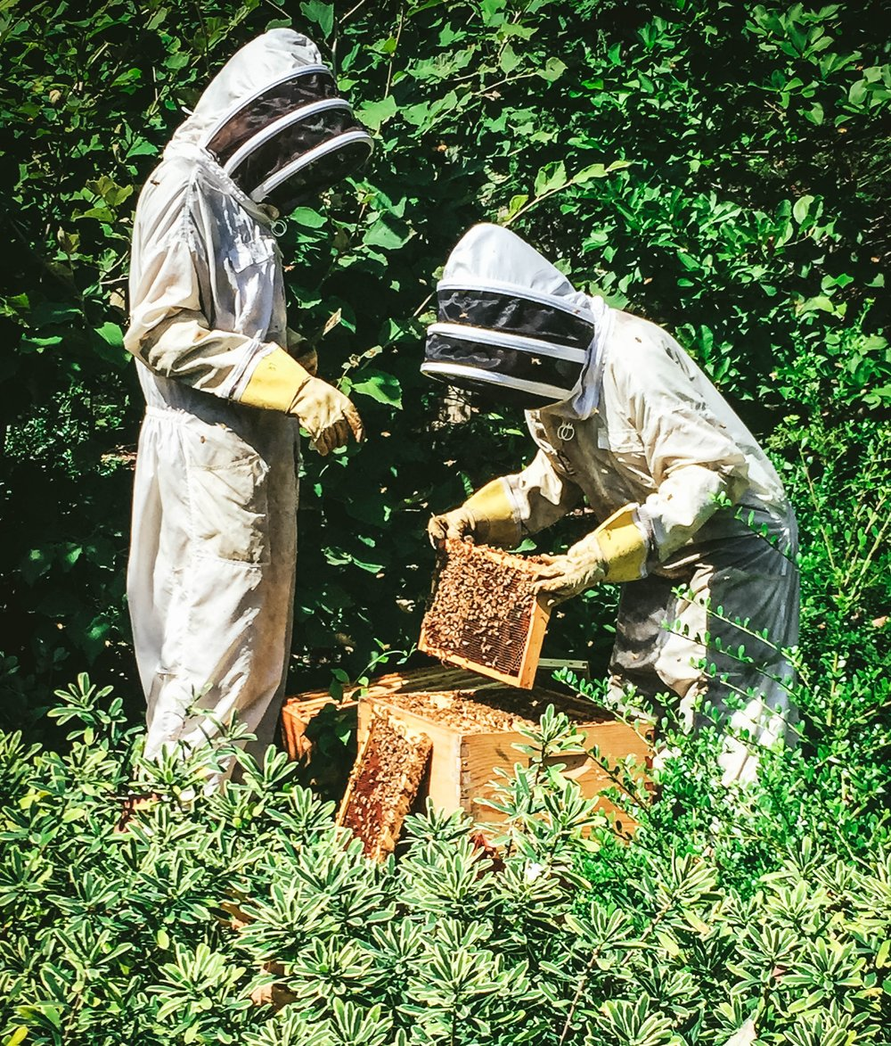 Beekeepers_Weston_Table.jpg