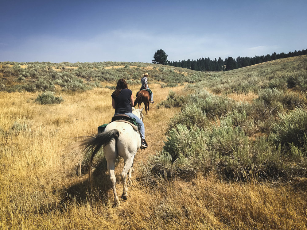 OUTDOOR ADVENTURE - With access to more than three million acres of national parks, world class skiing, alpine hiking, white water rafting, horseback riding, ATV trip , hunting, huckleberry picking, rock climbing, camping, cycling, and the states beloved--almost religious fly fishing culture, Montana reigns as one of the most pristine wilderness playgrounds for outdoor enthusiasts.