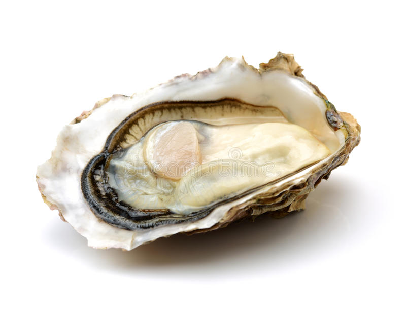 Malpeque | Prince Edward Island - With year round chilly waters, these oysters are a summertime pleasure, succulent and invigoratingly salty