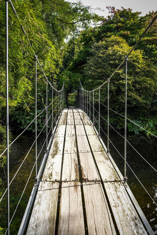 Mount_Usher_Bridge_Ireland_Weston_Table.jpg