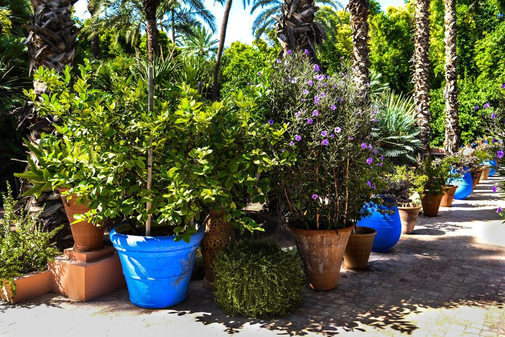 Yves_St._Laurent's_Marrakech_Private_Home_&_Gardens_Weston_Table.jpg