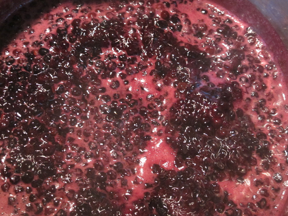 Elderberries and maple syrup simmering on the stove.