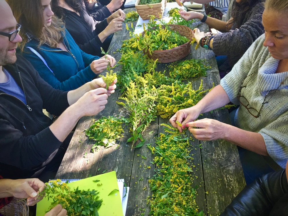 Arbor Vitae students making herbal medicine.