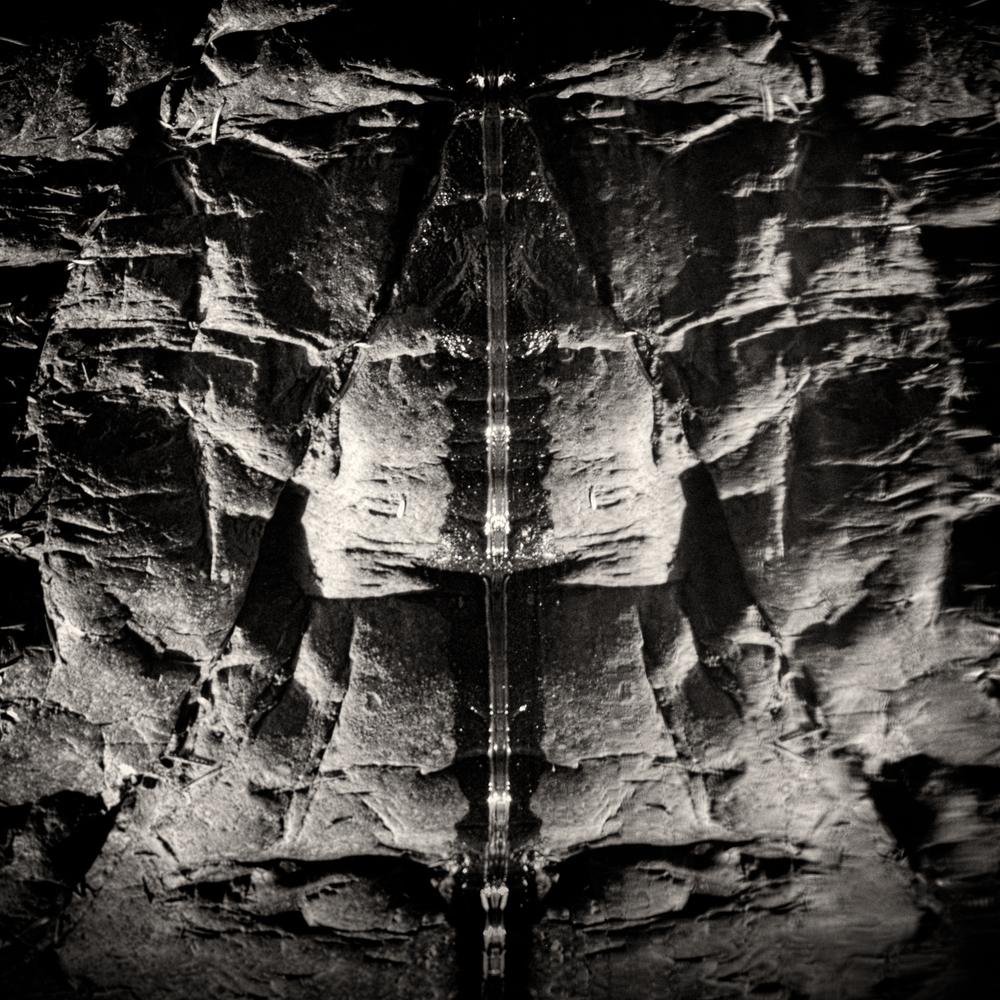 aliens (7 of 9).jpg