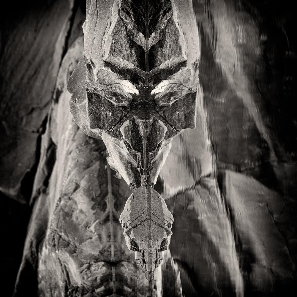 stone creature (7 of 1).jpg