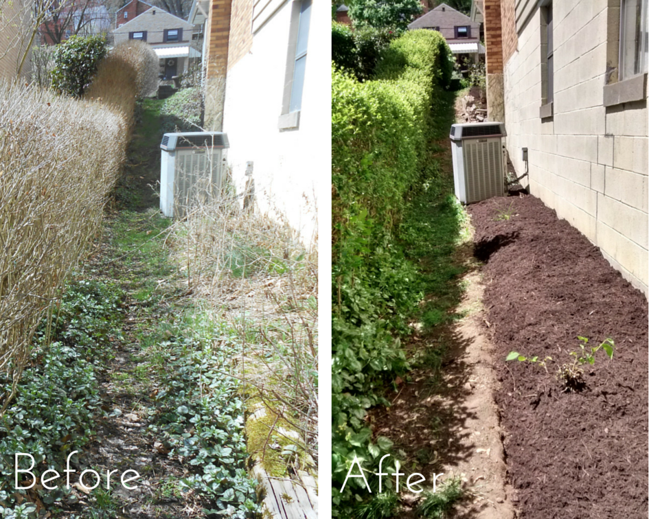 The bed on the side of this home was initially overgrown by weeds, and the owners wanted it cleaned out, mulched, and prepared for planting.
