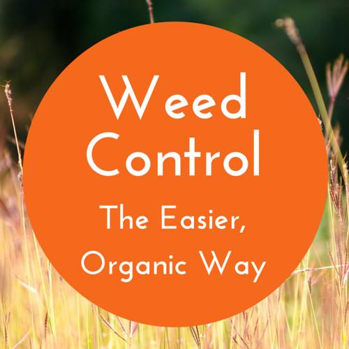 organicweedcontrol