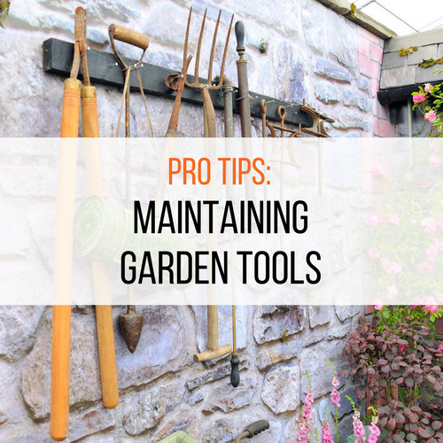 Pro tips maintaining your garden tools lk landscape design for Professional gardening tools