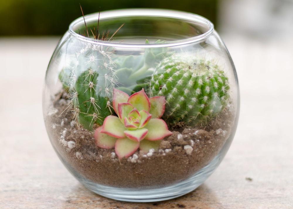 PLANT-HANGER (12 of 12).jpg