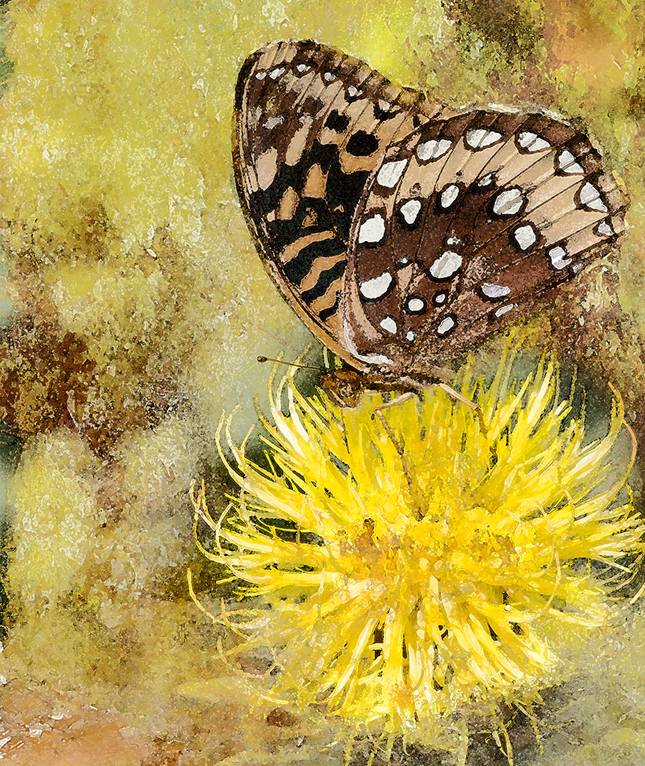 IMG_9659 painting web1.jpg