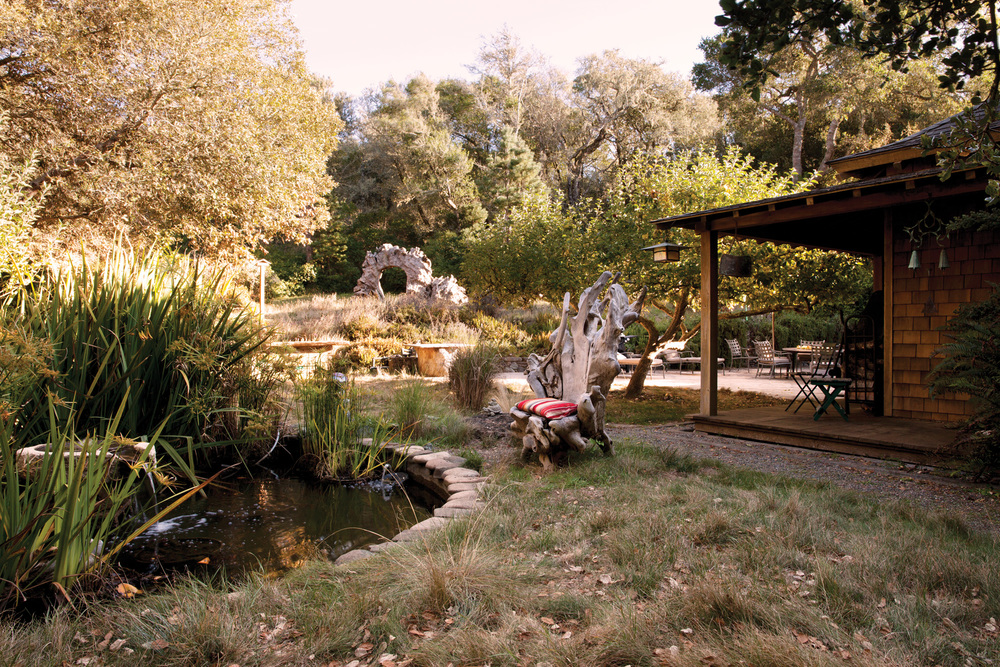 A root chair next to the pond and fountain—another quiet zone.