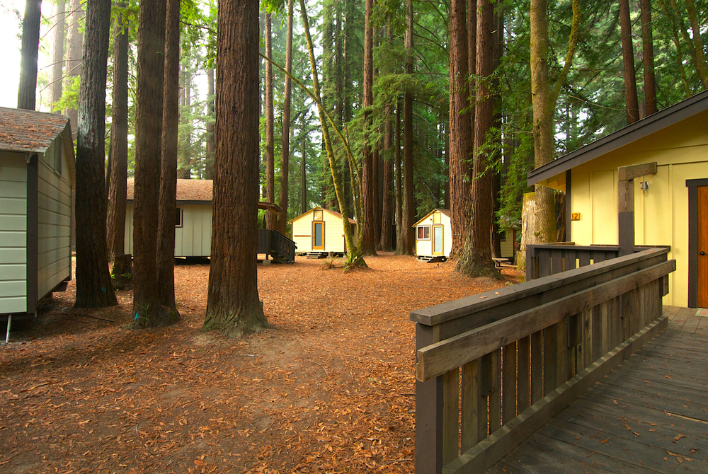 Wedding cabin wedding venue in the redwoods