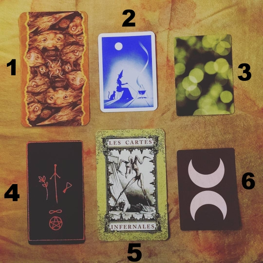Left-to-right, top-to-bottom: Faerie's Oracle, Fortune Telling Cards, Faerie's Nature Oracle, Raven's Prophecy Tarot, Les Cartes Infernales, Earthbound Oracle