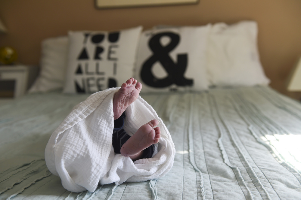blog Baby Jack260.jpg