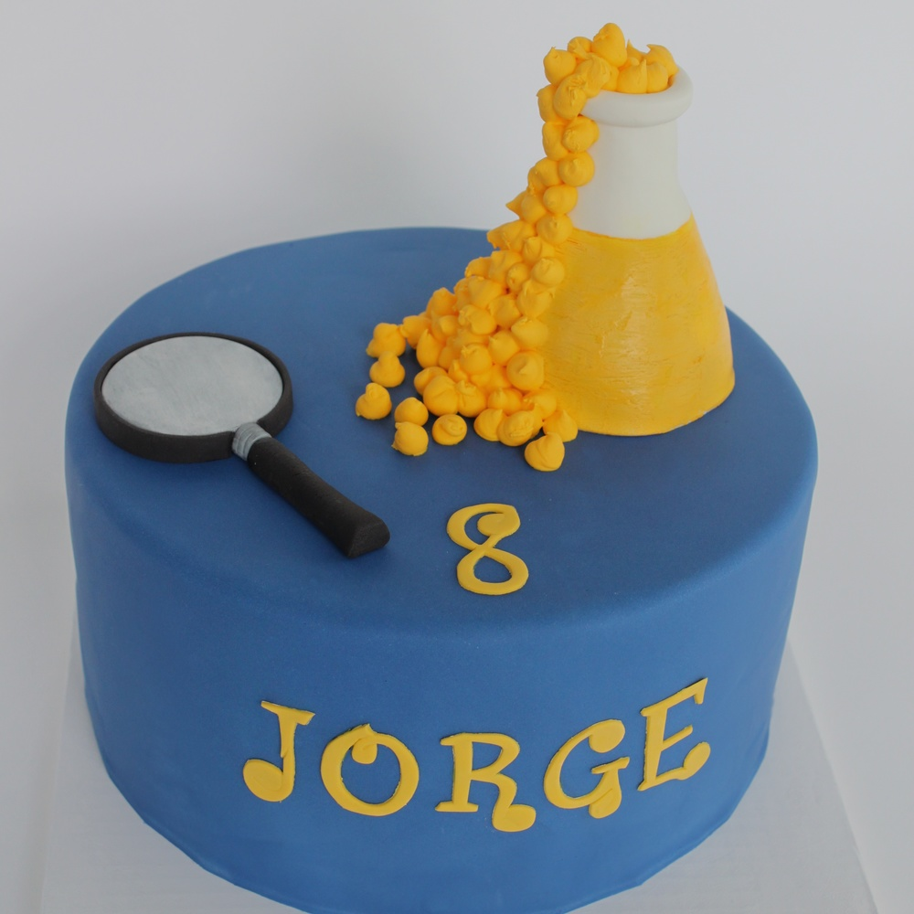 Science lab cake 9215 (1).jpg