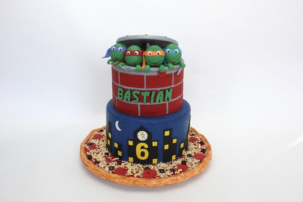 TMNT cake wide 8746.jpg