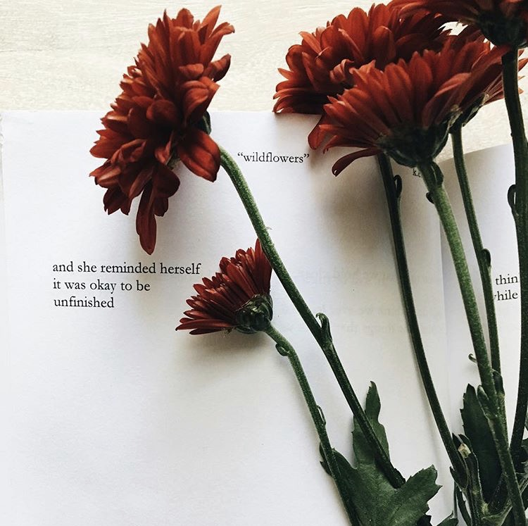 """afternoon reminders from my dear friend Katherine. if you haven't, order her book ""wildflowers"". i've read it cover to cover 3 times now + wow what a talent this girl has! so proud of you + all that you do. you never fail to amaze!"" Kate"