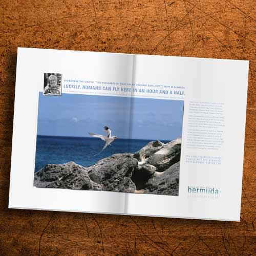 bermuda.Longtail_magazine2.jpg