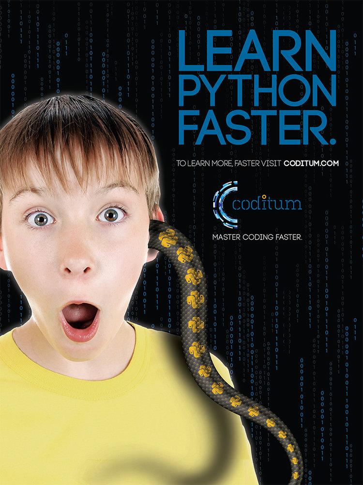 LearnPython_18x24_V2.jpg