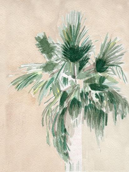 Palmtreeminted.jpg