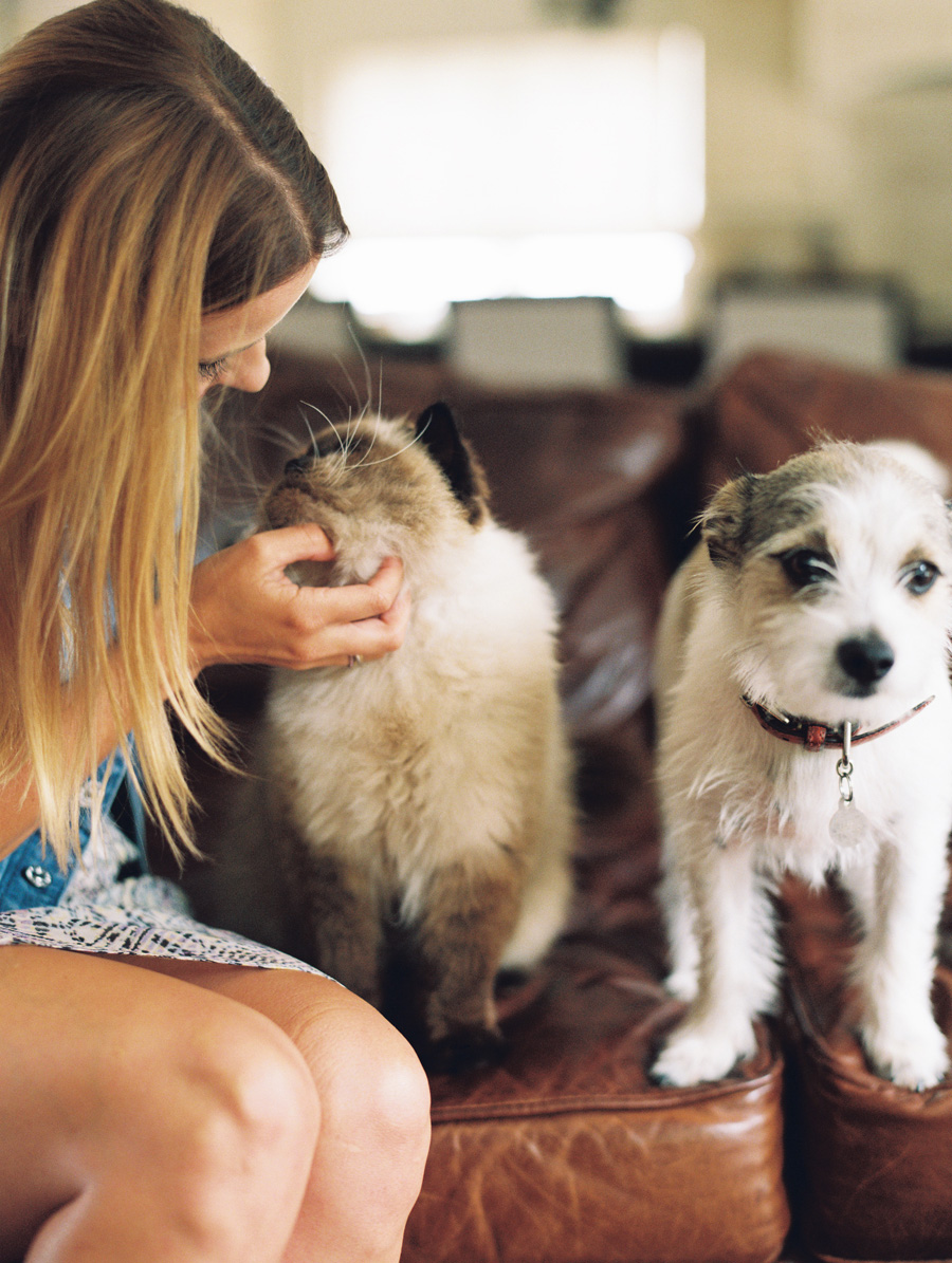 furbaby-family-dogs-cats-volkswagon-bug-victoria-oleary-photography-palos-verdes-02.jpg