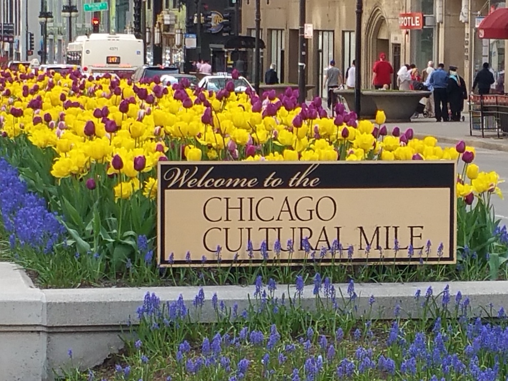 The north end of the Chicago Cultural Mile