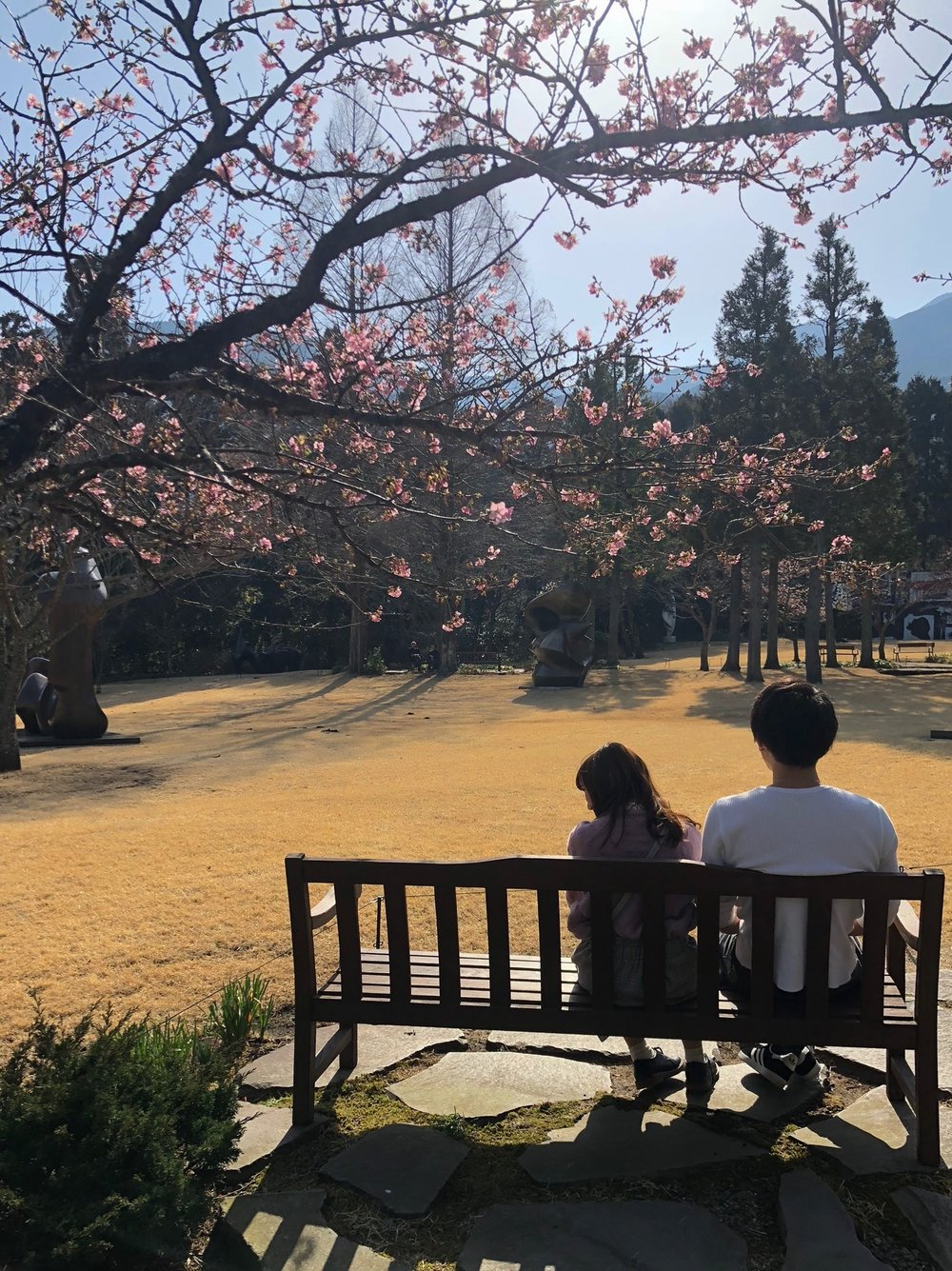 A cute couple taking in the view under some plum blossoms.