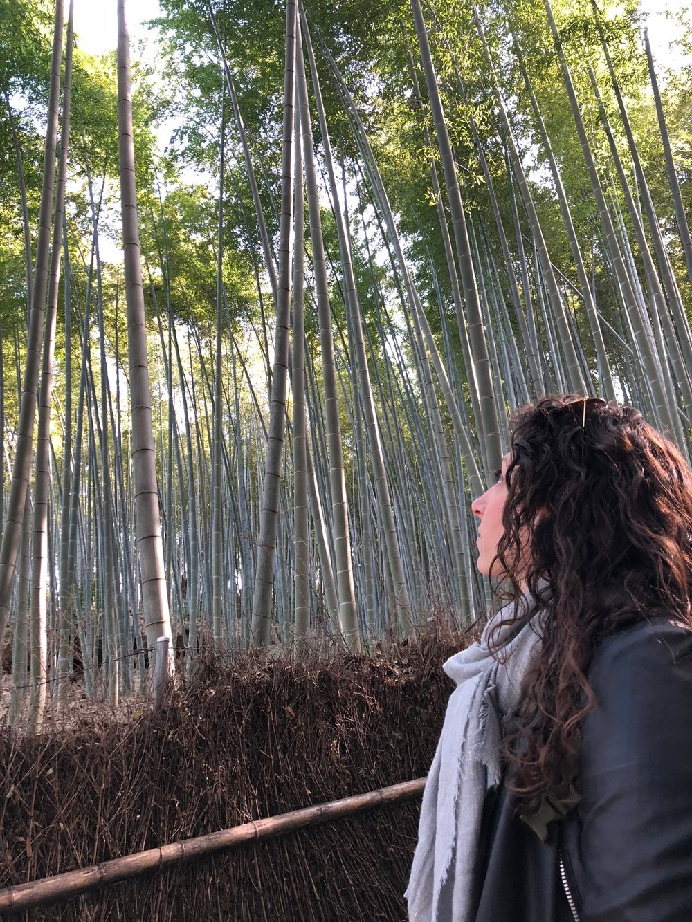 Alix pausing for a moment of reflection in the famous bamboo grove adjacent to the temple.
