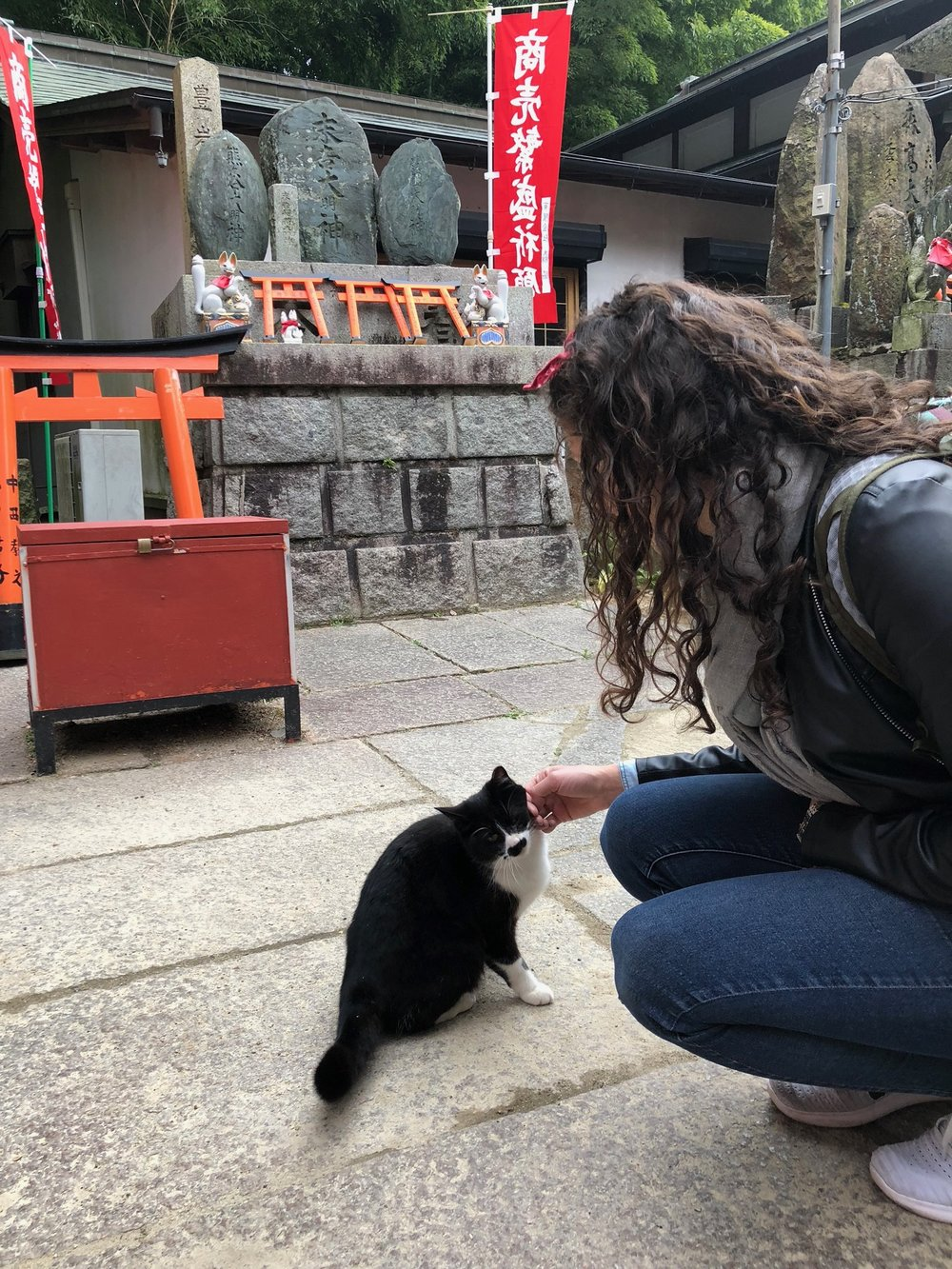 While we were looping back down the mountain, we spotted this little furry friend who belonged to one of the shopkeepers along the path. After a full week away from our girl Toki, we were happy to give this guy some love.