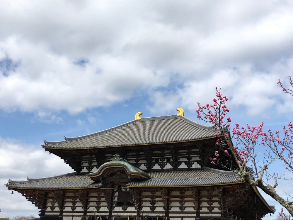 One beautiful shot of the Great Buddha Hall in Todai-ji. Although it might not look as breathtaking in photos, this temple was one of Alix and Steve's favorite of the trip.