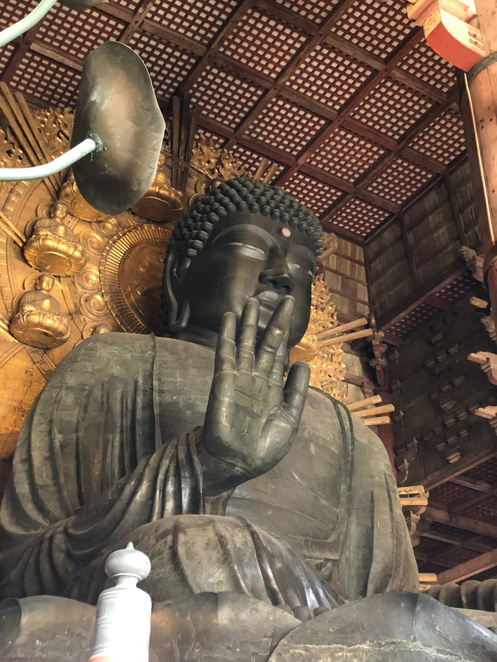 We shuffled thorugh the Great Buddha Hall with tons of other tourists to take in the Daibutsu in all his glory. He sits upon gigantic bronze lotus leaves inscribed with the story of the world of enlightenment.