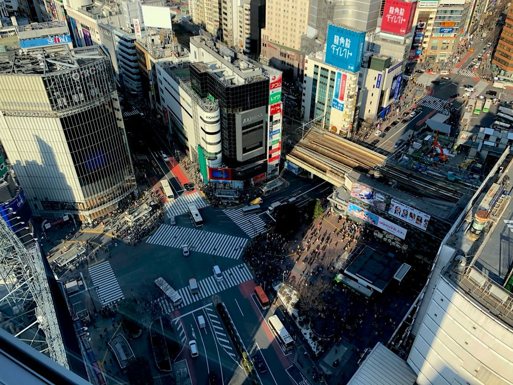 Looking down on Shibuya Crossing. We read about this secret place high up on the 27th floor of a hotel that overlooks the intersection. We had to use two elevators and pretend we were guests to get there!