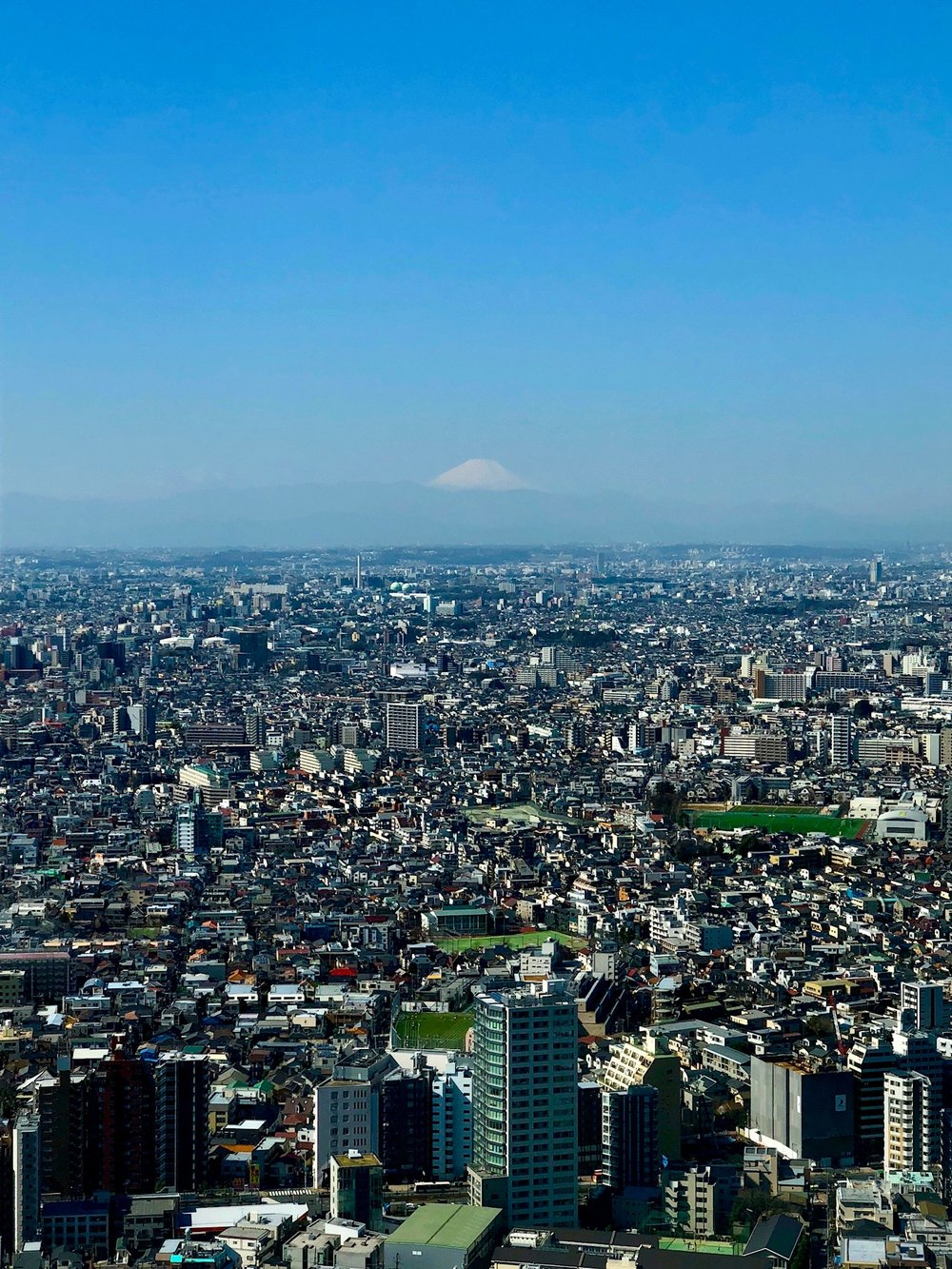 A good sense of just how big Tokyo really is... also Mt. Fuji can be seen in the distance