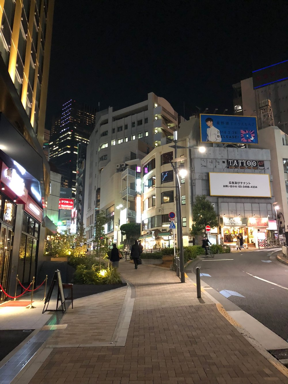 After dinner with Antje and Dave, walking back to the metro station, it dawned on us just how clean and expertly designed Tokyo is. This was our last night in Tokyo and we were really starting to get the hang of being there and having fun!